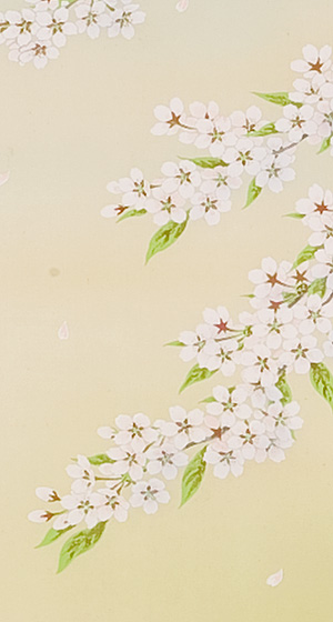 桜 橋谷和樹(直筆)